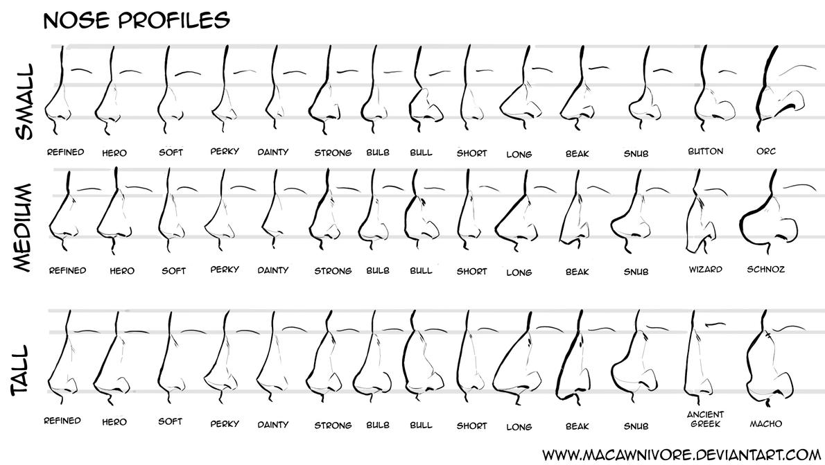 Nose Chart Reference by macawnivore