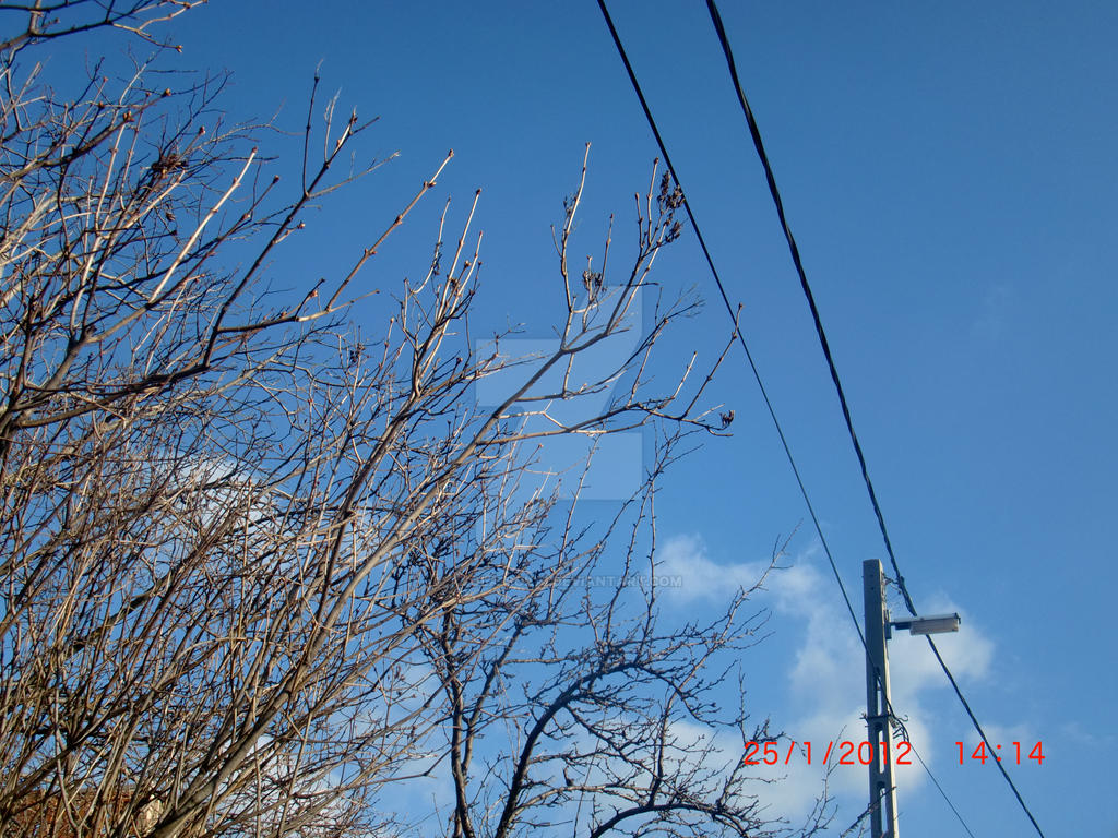 Cold air by ayola-sokai