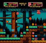 Dragon game NES