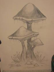 mushrooms by Artifakt