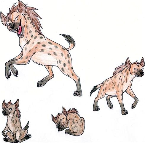 hyena sketches colored by crazycrocuta