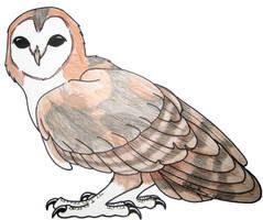 Barn Owl by InkHyaena