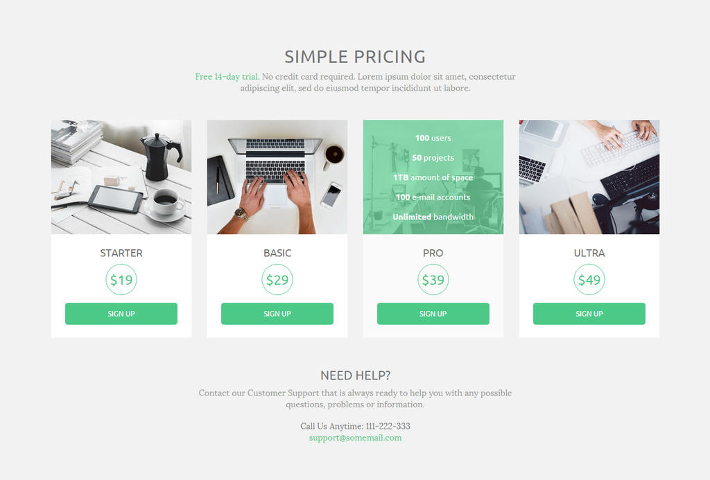 Simple Pricing Tables 2 by trissialabs