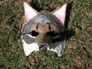 Cyote mask 2