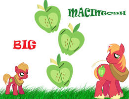 MLP:FiM Big Macintosh by lovergirl786