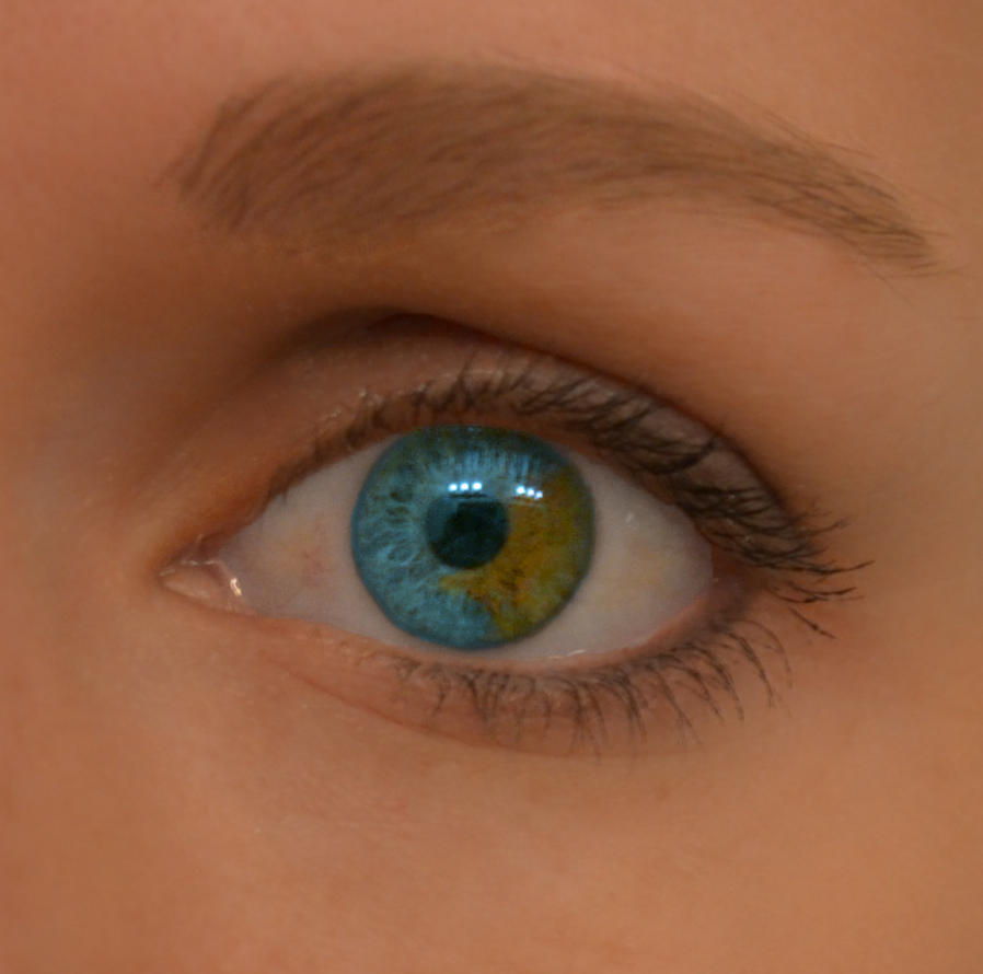 Sectoral Heterochromia by SmokeyLittleClover on DeviantArt