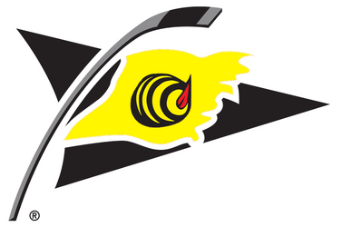 Alternativni logo