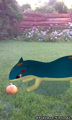 Riley's pumpkin by nightandkai