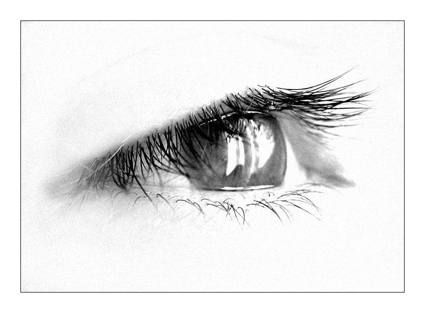 Hidden Eyes by DarknessWonder