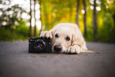 The Camera II by Huskana