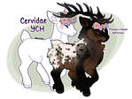 Cervidae YCH [4 new slots] by JollyMutt