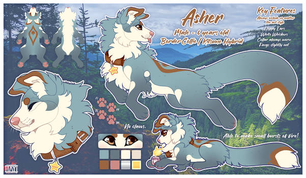 Asher - Reference