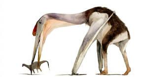 Hatzegopteryx by Guindagear