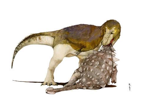 When Tyrannosaurus has win in ancient battle.