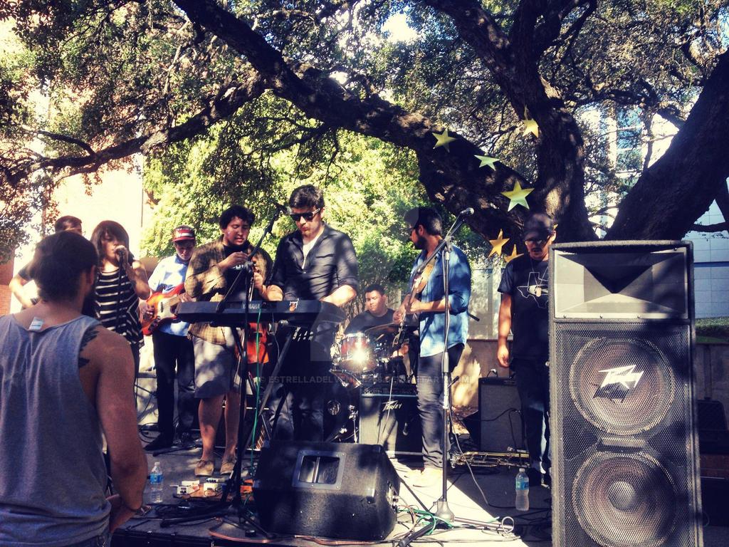 Outdoor Concert by EstrellaDelVenice258