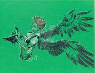 Color Hawkgirl