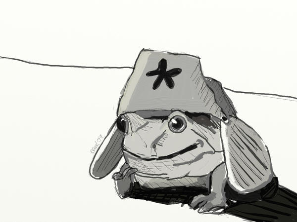 Frog in a hat by seVereo