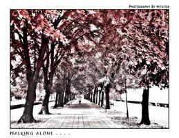 Walking Alone....