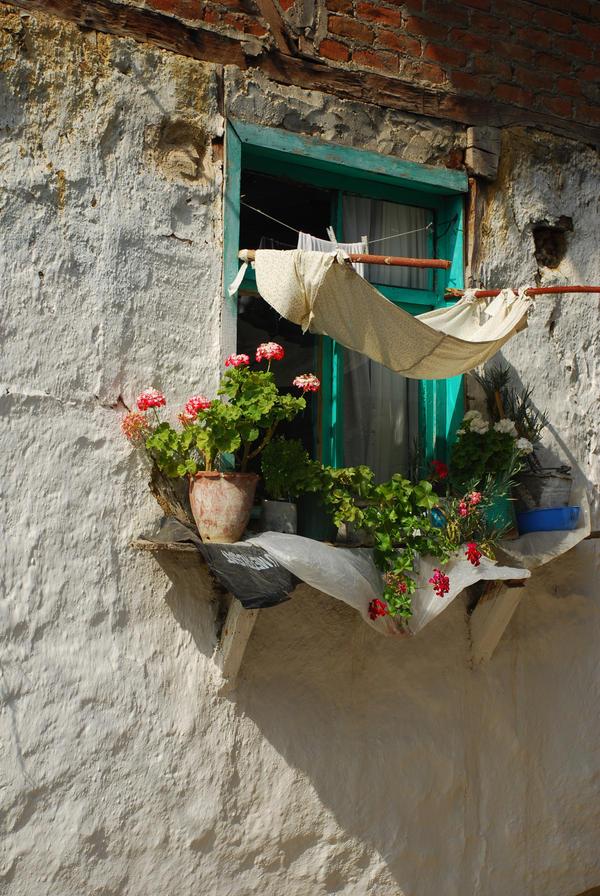 the window by femmepopart