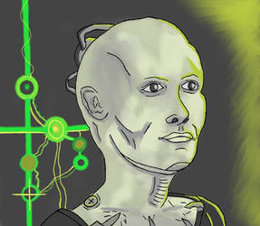 The Borg Queen by WarpFactor5