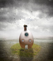 Birdhouse by crilleb50