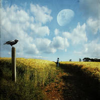 Walking Alone by crilleb50