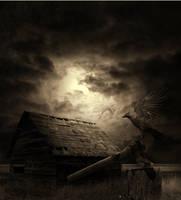 Dark Nights by crilleb50