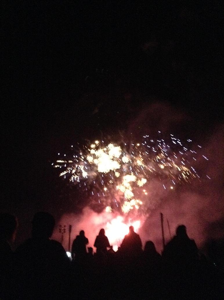 fireworks 2014 by Jenni666