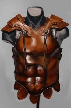 Leather Armor Study