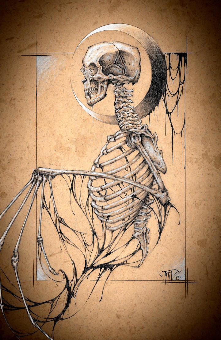 Vampiric Anatomy by TylerDobbs