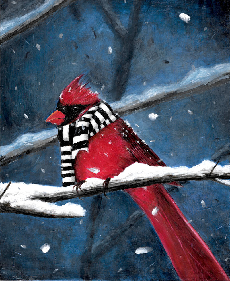 Winter Cardinal by TylerDobbs