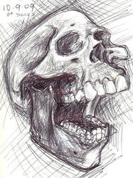 Skull - 1 by Rick-Dimps