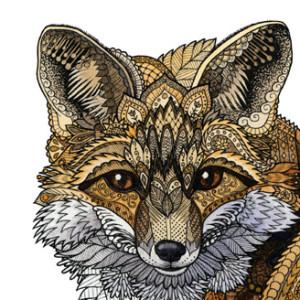 ZHField's Profile Picture