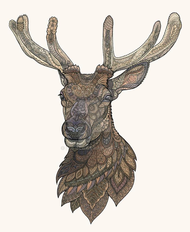 Reindeer by ZHField