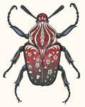Carnelian Beetle