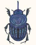 Cobalt Beetle