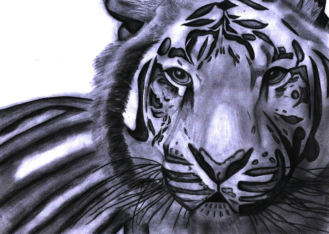 ''White'' Tiger by xteh