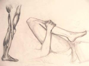Legs - study