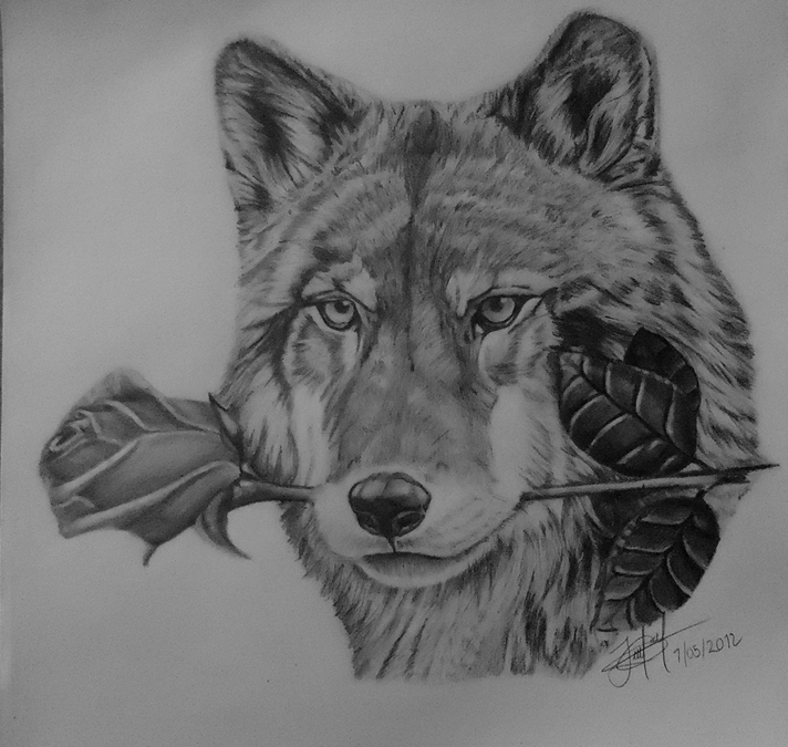 Mexican wolf with rose by jorgedelacruz on DeviantArt
