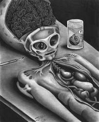 Alien Autopsy by LumpyGravy