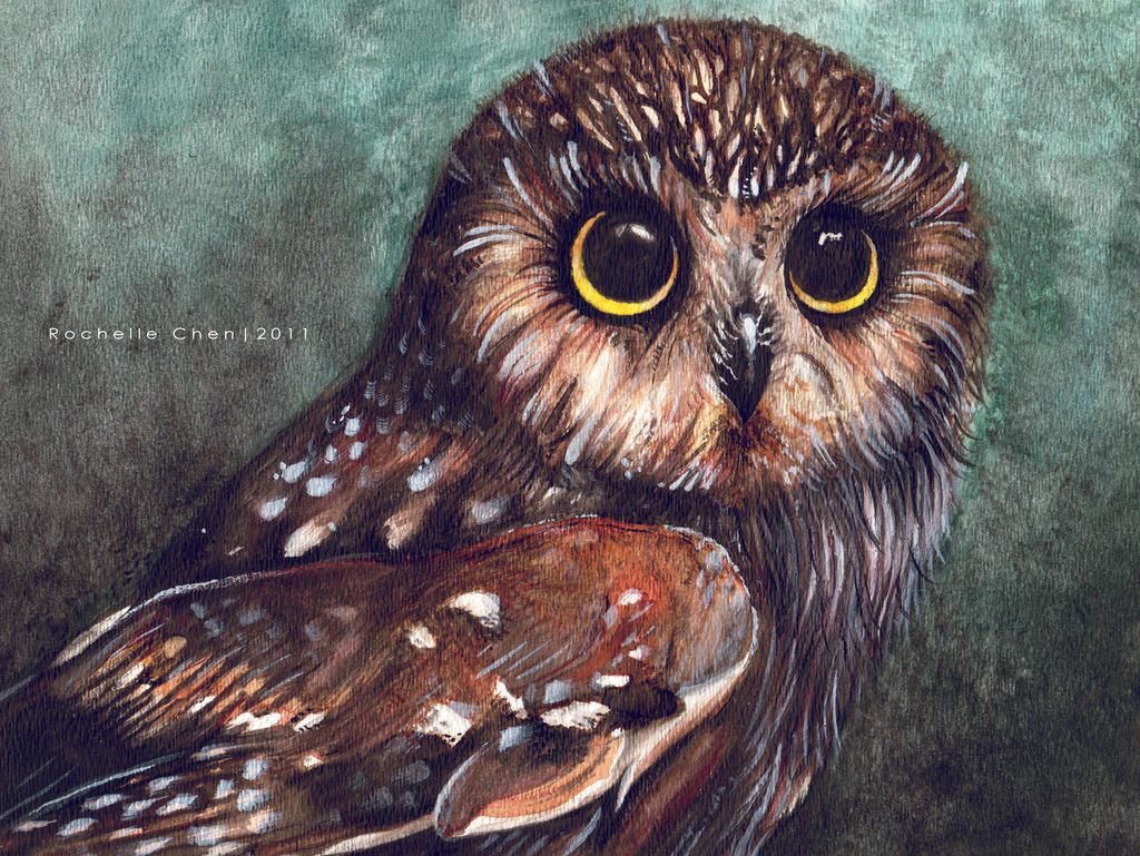 Water Owl by VanillaSnowflake
