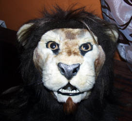 Mr Lion head