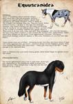 Equuscanidea_Breedsheet_English