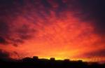 R. Real Sky