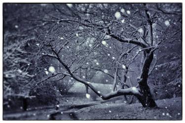 Let it Snow by MFDonovan