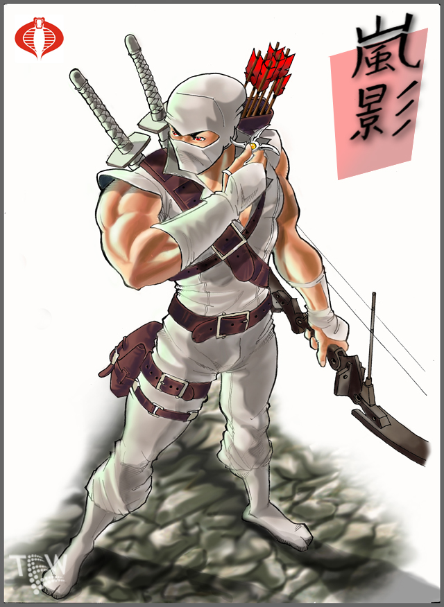 Storm Shadow by tew-tew