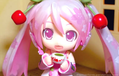 Tea Time Sakura Miku by FigureStorm