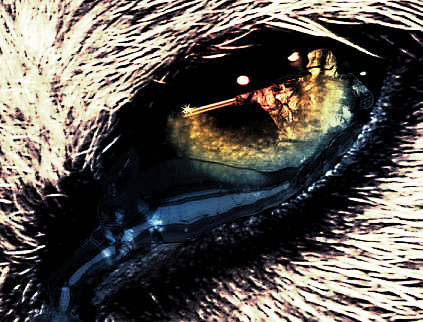Wolf Eye by InuKooh