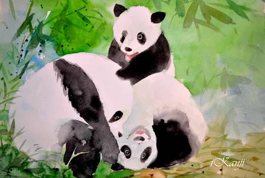 Pandas Watercolor