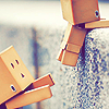 Danbo Icon 4 by LittleManaphy